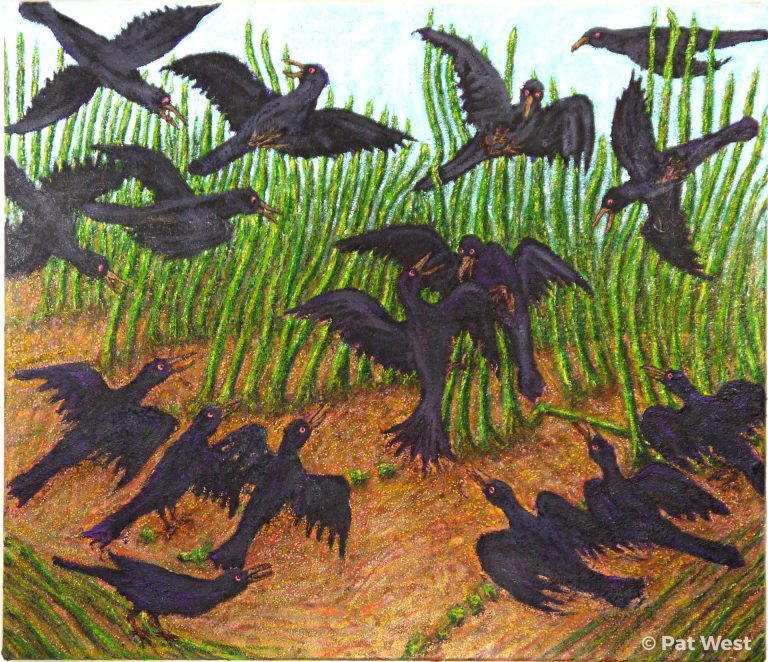 """""""Crow Fight"""" by Pat West"""