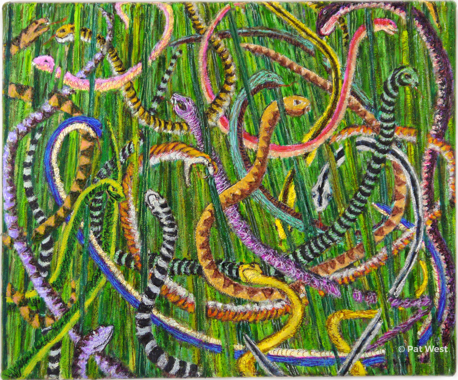 """""""Snakes in the Grass"""" by Pat West"""